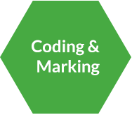 Coding and Marking